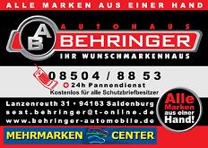 wBehringer